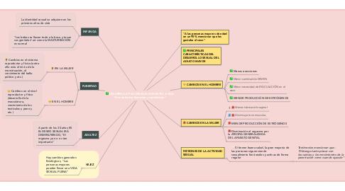 """Mind Map: DESARROLLO PSICOSEXUAL DURANTE LA VIDA """"Nos debe dar bienestar y satisfacción"""""""