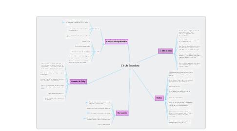 Mind Map: Célula Eucariota