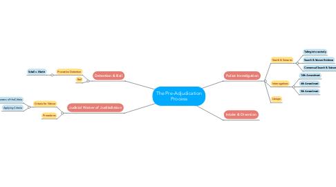 Mind Map: The Pre-Adjudication Process