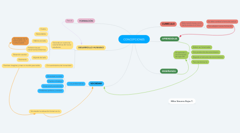 Mind Map: CONCEPCIONES