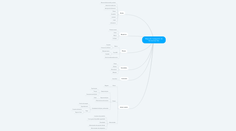 Mind Map: Mapa de navegación de Remember Me