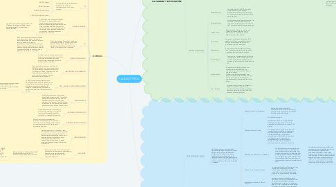 Mind Map: CALIDAD TOTAL