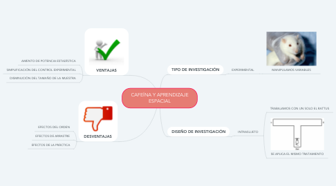 Mind Map: CAFEÍNA Y APRENDIZAJE ESPACIAL