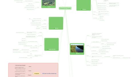 Mind Map: Bosques del Uruguay