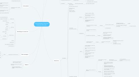 Mind Map: PLAN DECENAL DE SALUD PUBLICA 2012-2021.