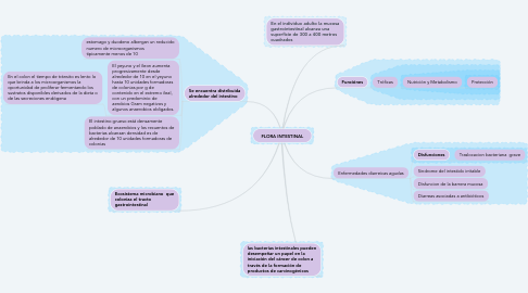 Mind Map: FLORA INTESTINAL