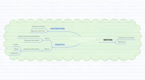 Mind Map: FUNCIONES DEL SISTEMA NERVIOSO