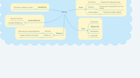 Mind Map: RAZAS