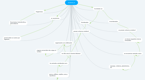 Mind Map: ANIMALIA