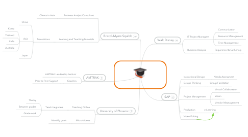 Mind Map: My Professional Career