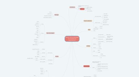 Mind Map: Relación de las estrategias con la estructura organizacional