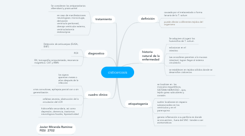 Mind Map: cisticercosis