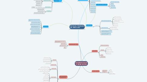 Mind Map: EXAMEN DE SALUD 12 MESES DE VIDA