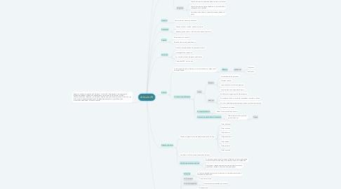 Mind Map: Artículo 20