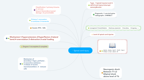 Mind Map: Spinal cord injury