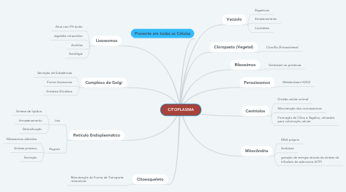 Mind Map: CITOPLASMA