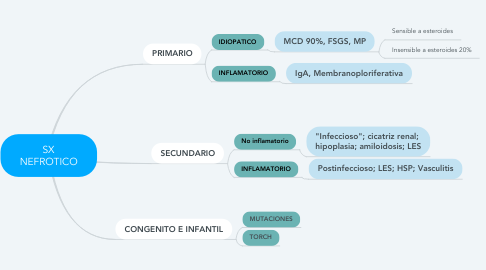 Mind Map: SX NEFROTICO
