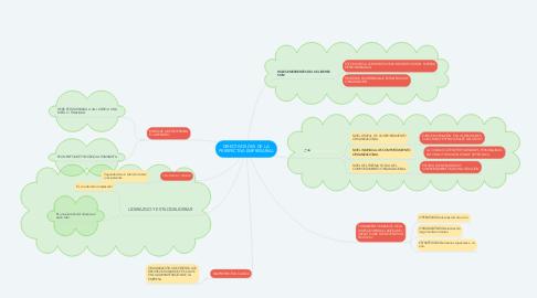 Mind Map: DIRECTIVOS DES DE  LA PERSPECTIVA EMPRESARIAL