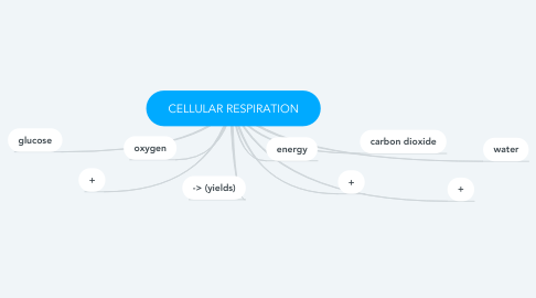 Mind Map: CELLULAR RESPIRATION