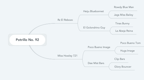 Mind Map: Potrillo No. 92