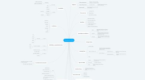 Mind Map: Preparacion Fisica