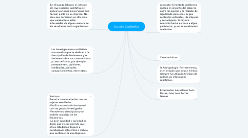 Mind Map: Estudio Cualitativo