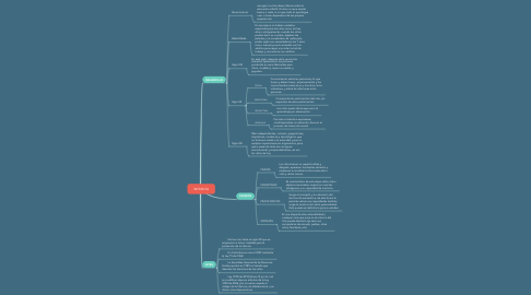 Mind Map: INFANCIA