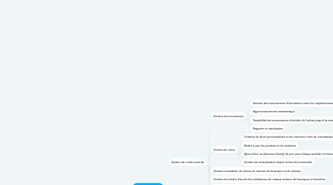 Mind Map: Gestion du groupe de chaines de boutiques