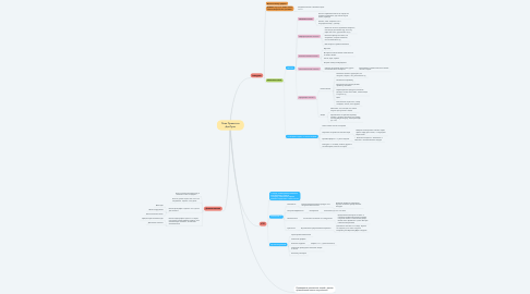 Mind Map: План Проекта в Донер Кинг