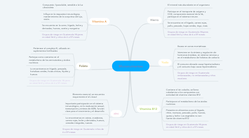 Mind Map: Micronutrientes