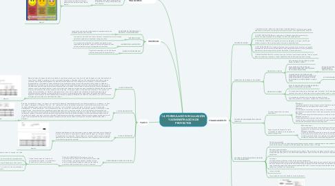Mind Map: 14. FORMULACIÓN EVALUACIÓN Y ADMINISTRACIÓN DE PROYECTOS