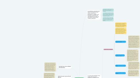 Mind Map: REALIZACION DE ENTREVISTAS
