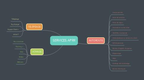 Mind Map: SERVICES APRR