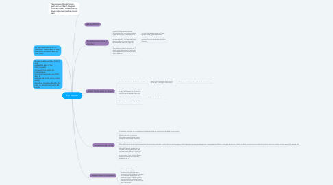 Mind Map: Kim Nguyen