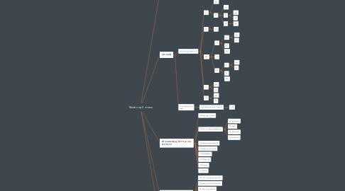 Mind Map: Bieden op 2 niveau