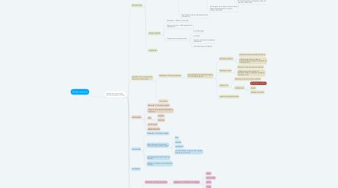 Mind Map: Projeto executivo