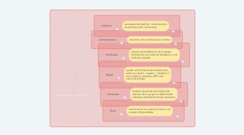 Mind Map: clasificación de las enzimas