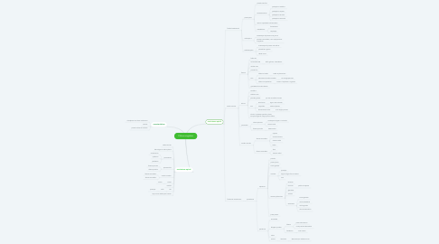Mind Map: Céluas vegetais