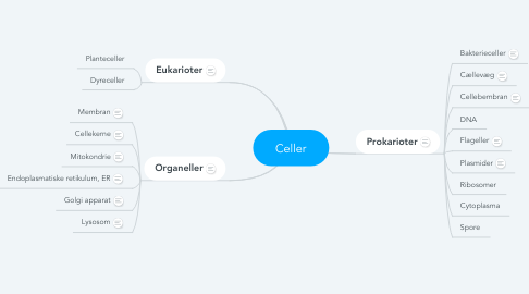 Mind Map: Celler