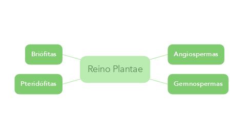 Mind Map: Reino Plantae