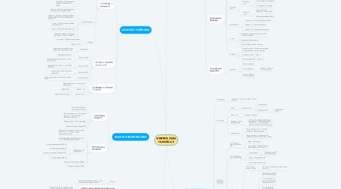 Mind Map: EMBRIOLOGÍA HUMANA II