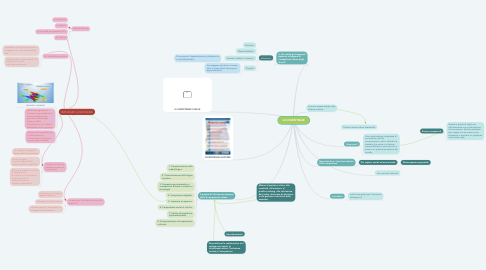 Mind Map: LE COMPETENZE