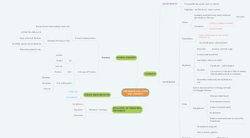 Mind Map: VERTEBRATE EVOLUTION AND DIVERSITY