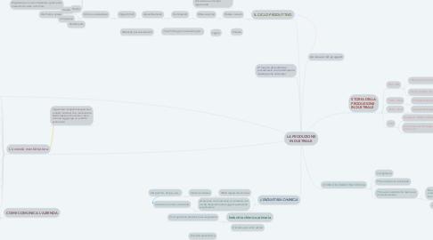 Mind Map: LA PRODUZIONE INDUSTRIALE