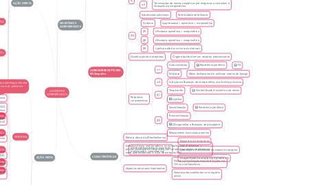 Mind Map: AGONISTAS ADRENÉRGICOS