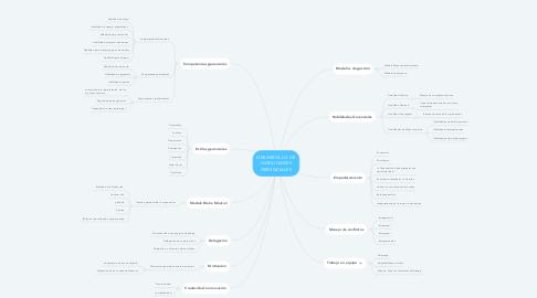 Mind Map: DESARROLLO DE HABILIDADES GERENCIALES