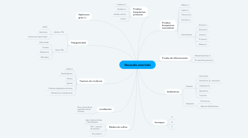Mind Map: Moraxella catarrhalis