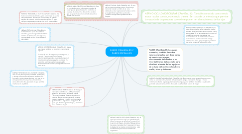 Mind Map: PARES CRANEALES Y PARES ESPINALES