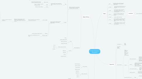 Mind Map: Diseño Industrial y Ergonomía