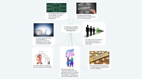 Mind Map: 2. Professional Skills and Organizational Management